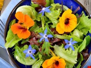 Trucchi per insalate estive irresistibili