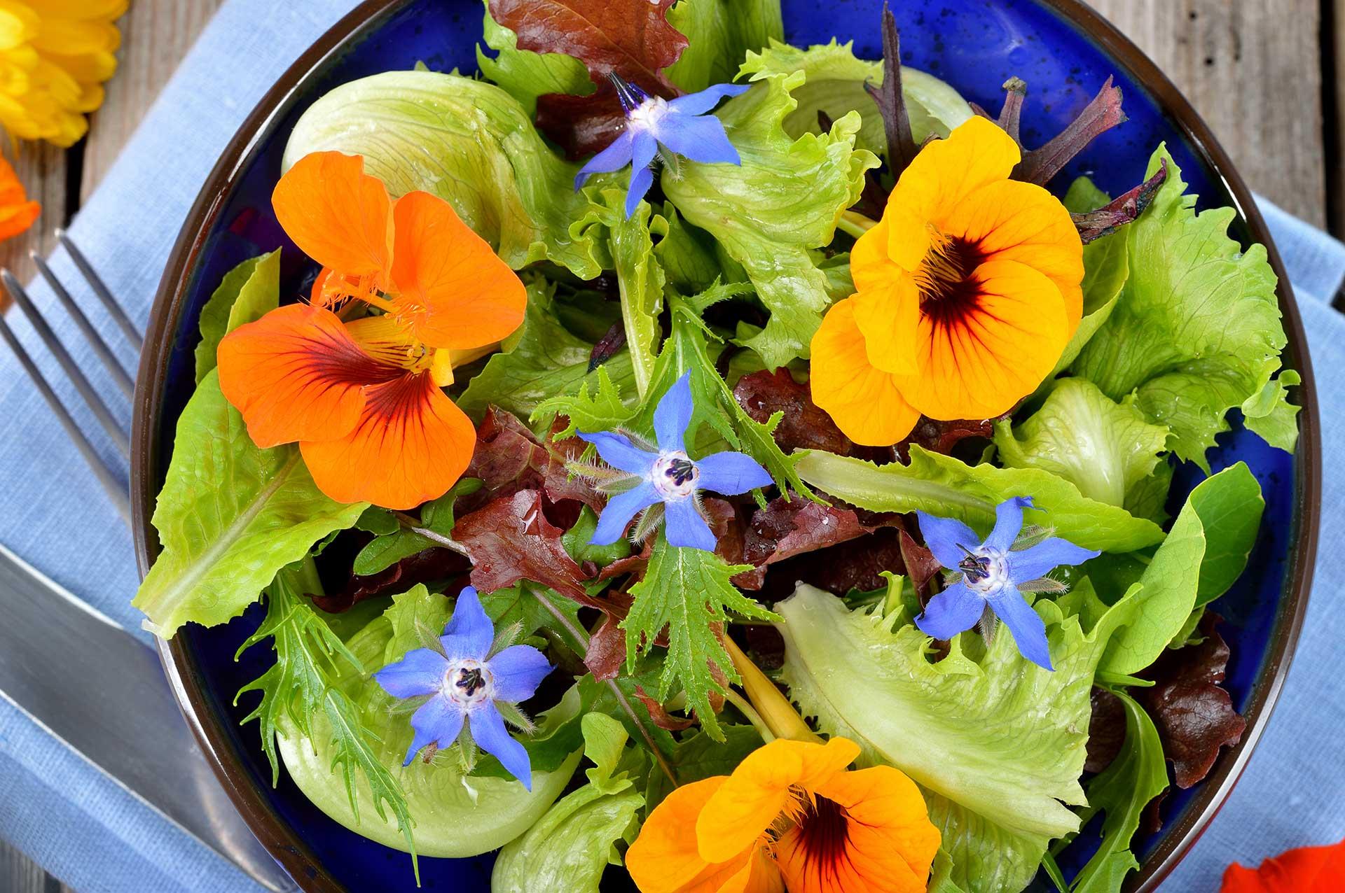 Trucchi per insalate estive irresistibili doma food for Fiori edibili