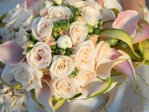 Tutti i fiori della primavera per il tuo bouquet
